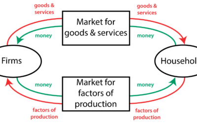 Which Best Describes what injector Factors Bring to an Economic System?